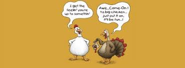 Small Picture Funny Turkey Pictures Thanksgiving 2017 Thanksgiving Turkey Images