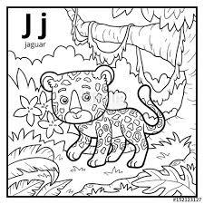coloring book colorless alphabet letter j jaguar
