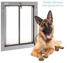 large dog door pet giant breed for sliding glass
