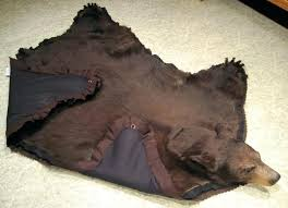 hanging bear rug on wall rugs ideas gallery