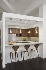 Dining Kitchen Design of Loft Apartment Renovation in New York By ixdesign