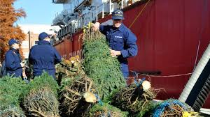 Image result for CHRISTMAS TREE SHIP