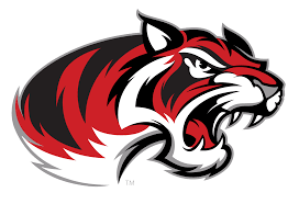 Braswell - Team Home Braswell Bengals Sports