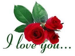 red rose wallpapers amjid i love u
