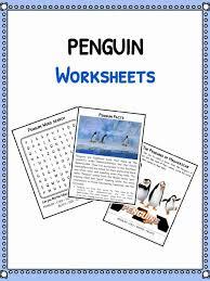 Penguin Facts, Worksheets & Species Information For Kids | PDF ...