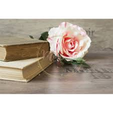 old books and flower rose on a wooden background romantic fl frame background picture