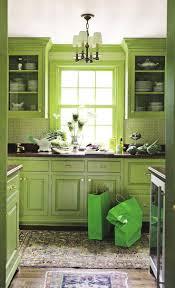 Green Kitchen Cabinet Doors 17 Best Ideas About Lime Green Kitchen On Pinterest Lime Green