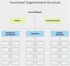 Company Flow Chart Example Lovely Org Chart Excel Template
