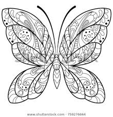 drawing pictures for adults.  For Detailed Butterfly Drawing For A Coloring Book Adults With Pictures For