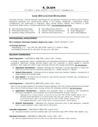 Graphic Programmer Resume Sample Resume For An Experienced ...