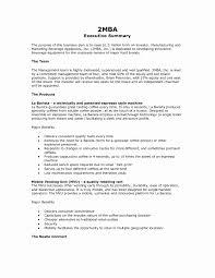 Executive Summary Templates Resume Executive Summary Example Lovely Executive Summary Outline 1