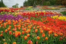 best botanical garden winners 2020