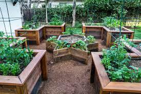 raised bed vegetable garden klassisch