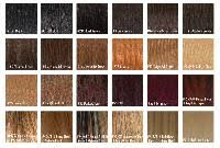 Radico Hair Color Chart Arrow Exim Offers Human Hair Color Chart Envelopes India