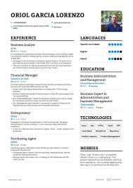 Resume Cv Template Examples Business Analyst Resume