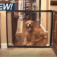 dog gate the ingenious mesh magic pet gate