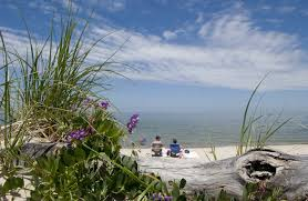 Breakwater Beach Cape Cod Online