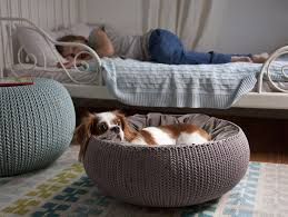 dog bed furniture. KNIT By Curver Pet Beds And Furniture Dog Bed