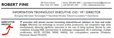 executive resume writing example summary example of a summary for a resume