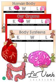 Kwl Chart Classy KWL Chart Human Body Organs Systems Teaching Pinterest