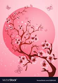 Beautiful Cherry Blossom Background Spring Nature