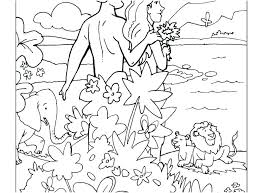 Medium Size Of Creation Coloring Pages Preschool School For