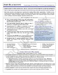 Ceo Resume Interesting Executive Resume Sample Chief Executive Officer Executive Resume