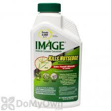 Image Kills Nutsedge Concentrate