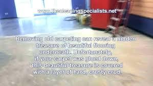 remove carpet glue from concrete floor remove glued carpet how to remove glued carpet from concrete remove carpet glue from concrete floor how