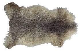 white and brown sheepskin rug