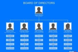 Free Org Chart Template Word 003 Ic Hierarchical Organizational Chart Template Word Ideas