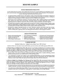 human resources executive resume objective sample resume human resources