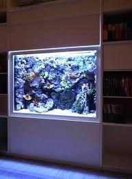 wall fish tank in wall aquarium built in wall aquarium with artificial rock background and cs