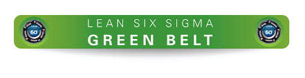 Global It Investors Inc Lean Six Sigma Green Belt