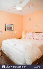 Peach Colored Bedroom Peach Colored Bedroom Peach Colored Bedroom Vintage Coral On Sich