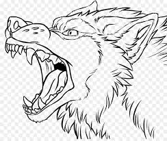 white wolf growling drawing. Line Art Gray Wolf Snarl Drawing Growling Lineart Intended White