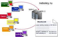 Что такое сервер компьютерной сети Твой сетевичок Как работает dns в локальной сети