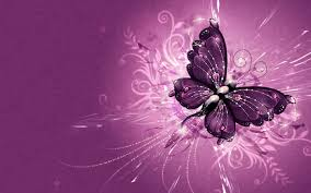 Pretty Butterfly Wallpapers Group (61+)