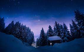1920x1200 Stars Night Snow Forest House ...