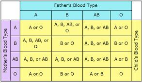Biology Blood Circulation Blood Groups