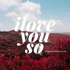 Short Love Quotes For Him Delectable LOVE SMS BEST LOVE QUOTES FOR U