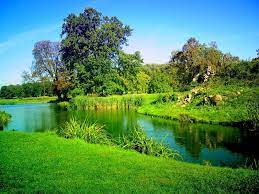 nature background images hd-2