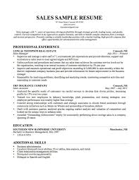 Resume Additional Skills Examples What To Put Under What To Put On A