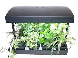 apartment herb garden. Apartment Herb Garden Kit Why Do My Indoor Plants Die Gardening Help Home Depot Large Wok Reseda
