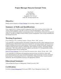 good profile resume statements good resume profile examples