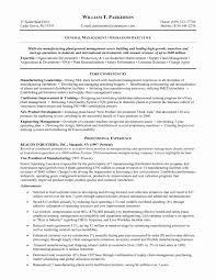 Resume Sample Of Sales Manager Fresh Management Resume Objective