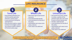 Discover your life insurance policy value in seconds: Life Insurance Policies In Reading Pa Gallen Insurance