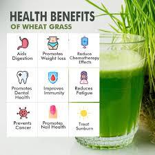 nattfru wheat gr juice powder 100