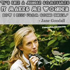 Jane Goodall Quotes New Man Of Many Words Famous Fake Quotes Jane Goodall