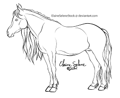 Breyer Coloring Pages Color Bros